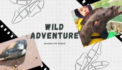 釣りだ!動物だ!自然体験がしたくてたまらなくなる子供向け英語動画。