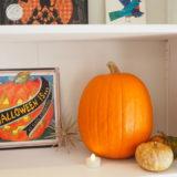 ハロウィンかぼちゃ掘り
