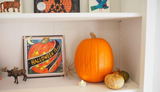 本物のハロウィンかぼちゃを買ってみた!